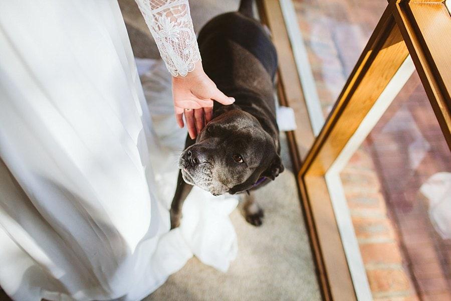 budgie-smuggler-ringwood-wedding-photos_0022